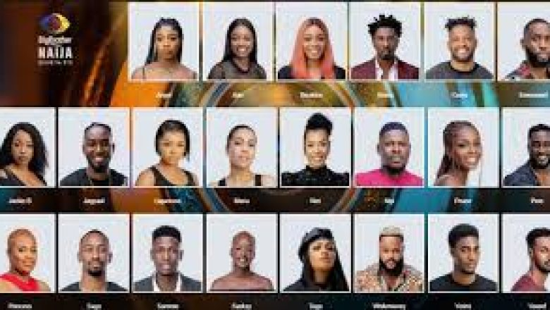 BBNaija First Twist: Who Are The Wildcards